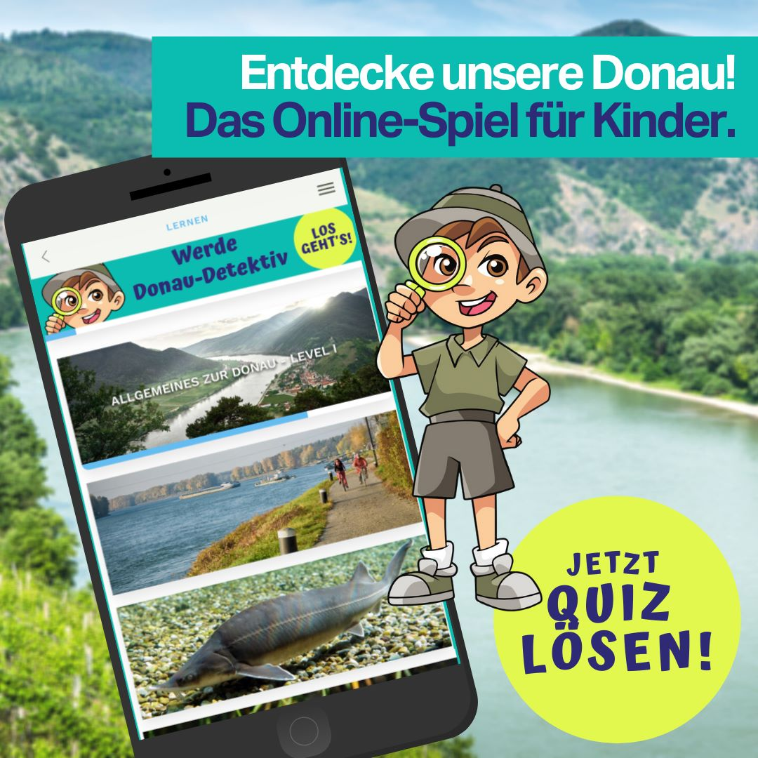Wasser Quiz App